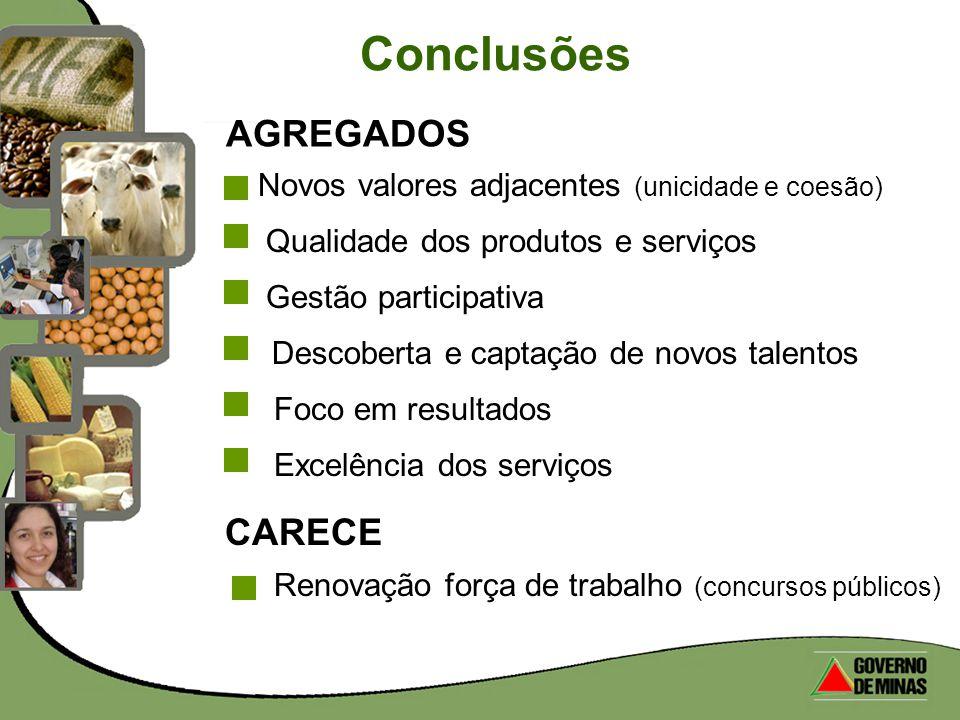Conclusões AGREGADOS CARECE
