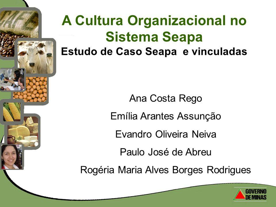 A Cultura Organizacional no Sistema Seapa Estudo de Caso Seapa e vinculadas