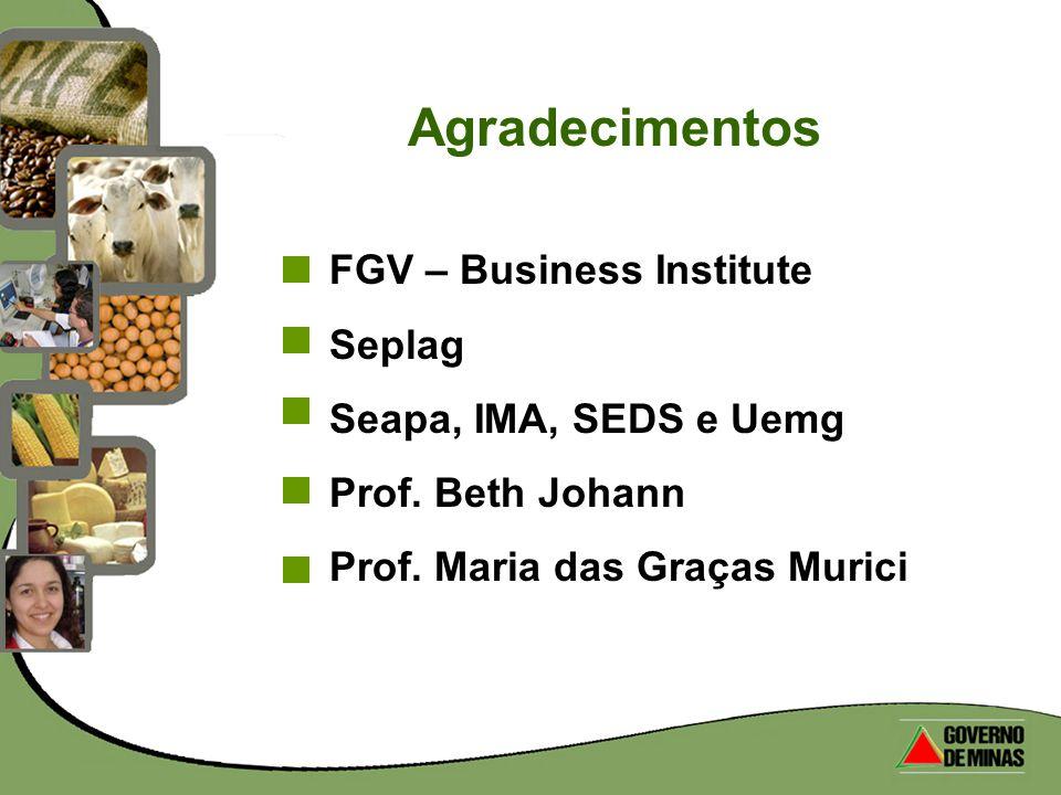 Agradecimentos FGV – Business Institute Seplag Seapa, IMA, SEDS e Uemg