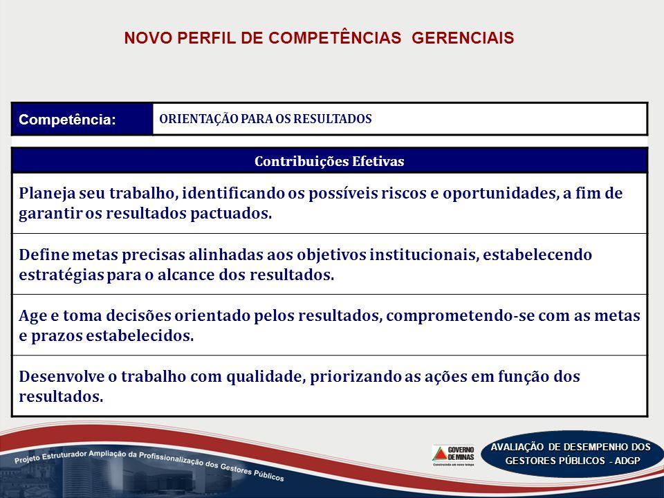 NOVO PERFIL DE COMPETÊNCIAS GERENCIAIS Contribuições Efetivas