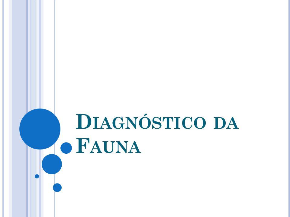 Diagnóstico da Fauna