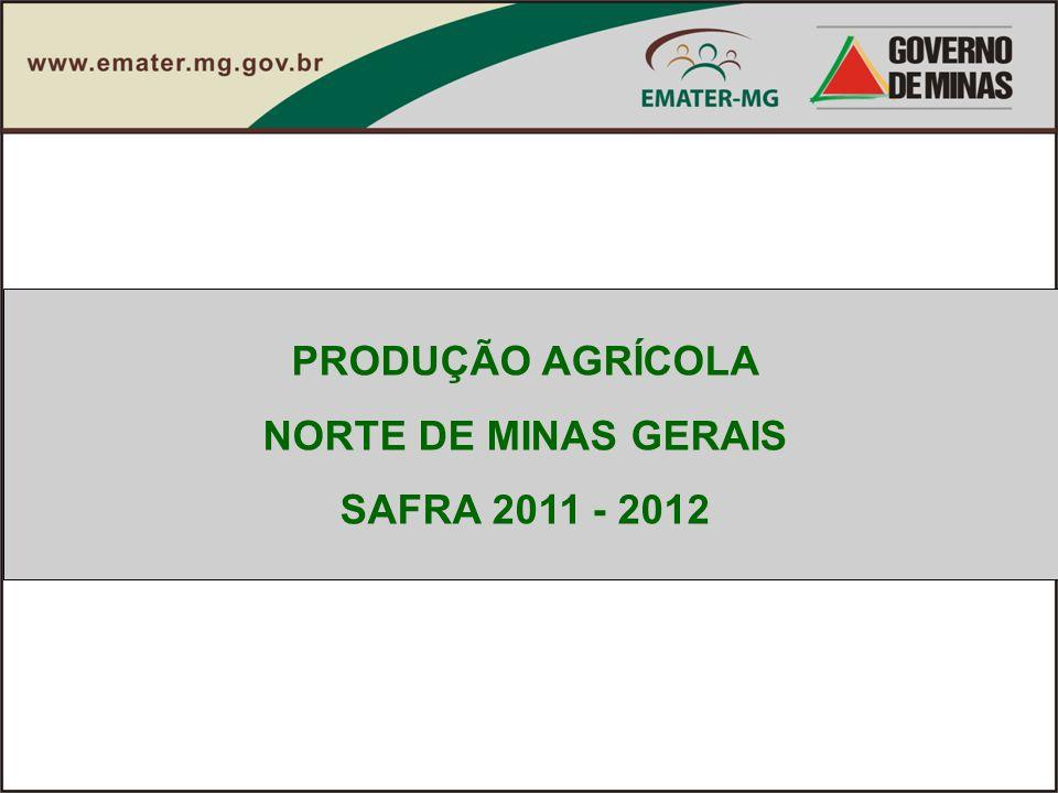 PRODUÇÃO AGRÍCOLA NORTE DE MINAS GERAIS SAFRA 2011 - 2012