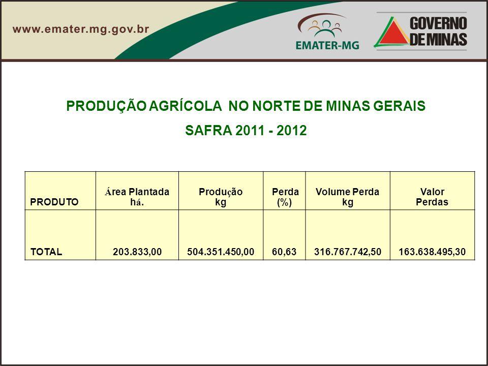 PRODUÇÃO AGRÍCOLA NO NORTE DE MINAS GERAIS