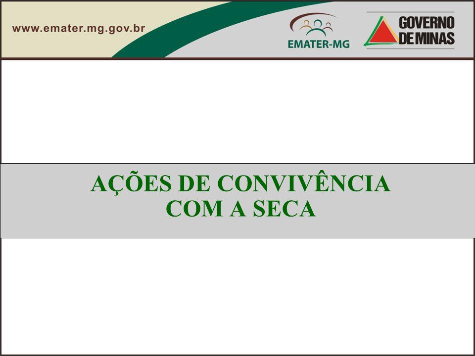 AÇÕES DE CONVIVÊNCIA COM A SECA