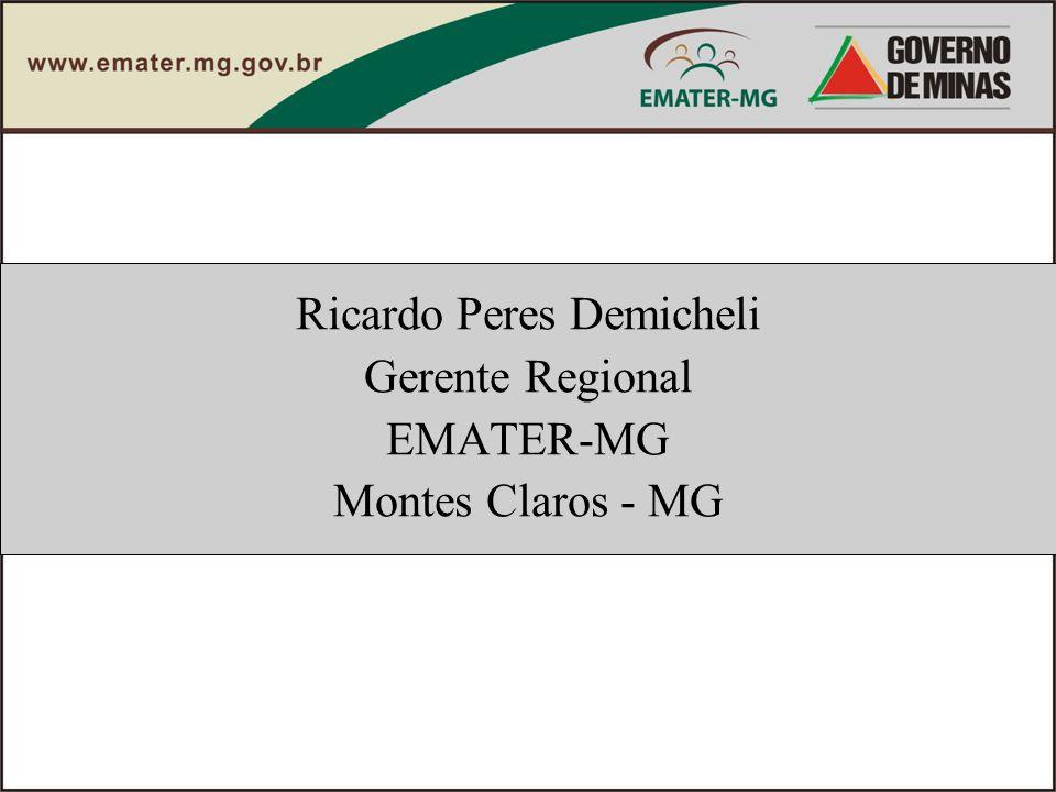 Ricardo Peres Demicheli