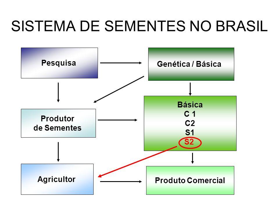 SISTEMA DE SEMENTES NO BRASIL