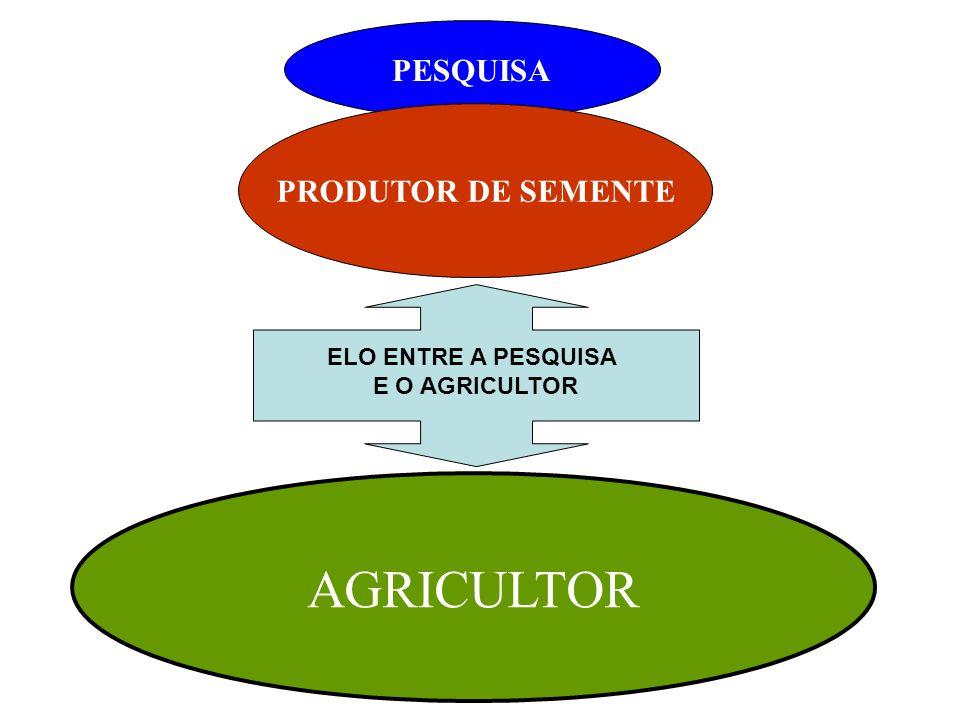 AGRICULTOR PESQUISA PRODUTOR DE SEMENTE ELO ENTRE A PESQUISA