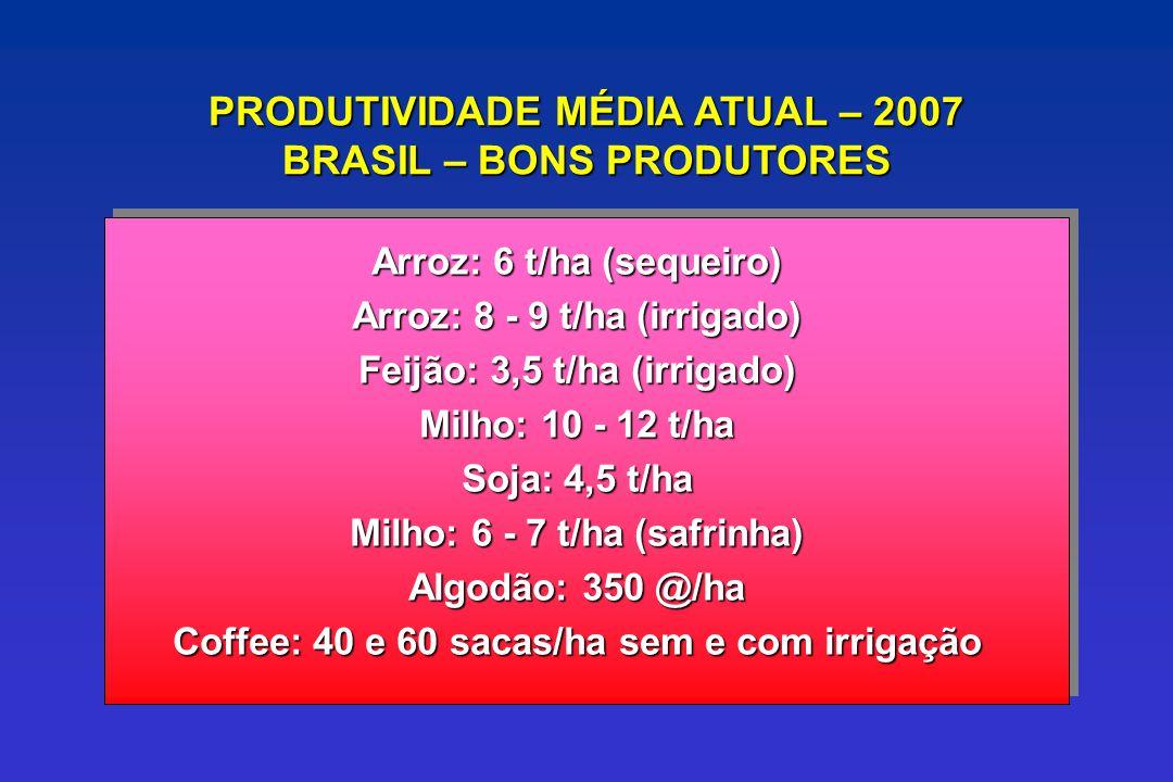 PRODUTIVIDADE MÉDIA ATUAL – 2007 BRASIL – BONS PRODUTORES