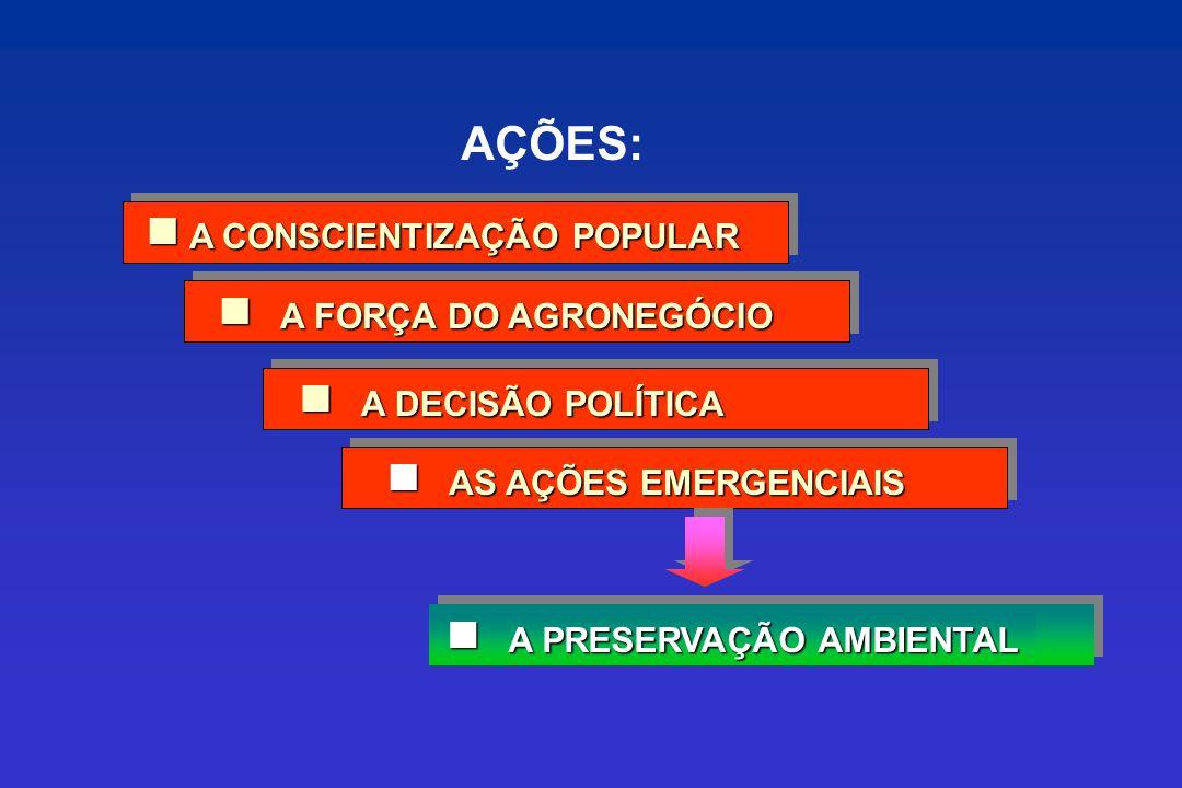 A CONSCIENTIZAÇÃO POPULAR A PRESERVAÇÃO AMBIENTAL