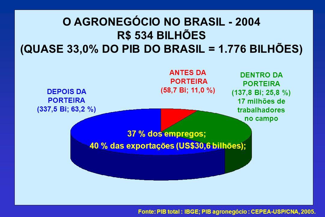 O AGRONEGÓCIO NO BRASIL - 2004 R$ 534 BILHÕES
