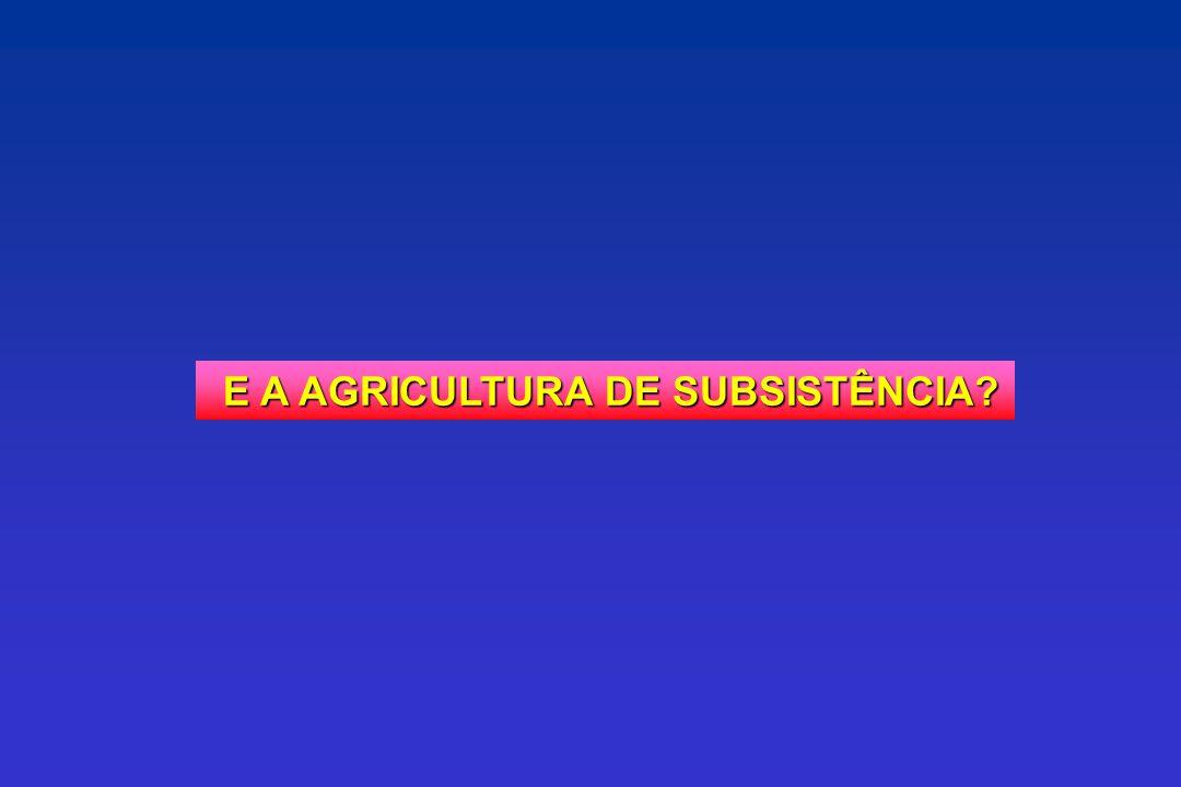 E A AGRICULTURA DE SUBSISTÊNCIA