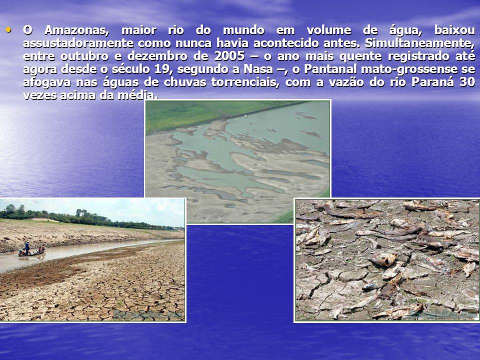 O Amazonas, maior rio do mundo em volume de água, baixou assustadoramente como nunca havia acontecido antes.