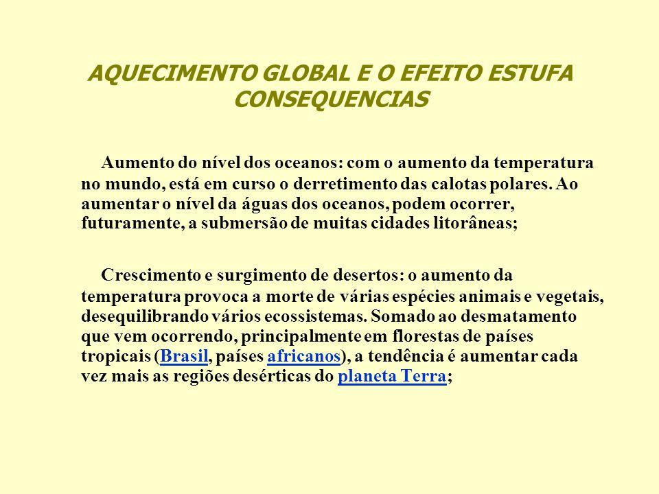 AQUECIMENTO GLOBAL E O EFEITO ESTUFA CONSEQUENCIAS