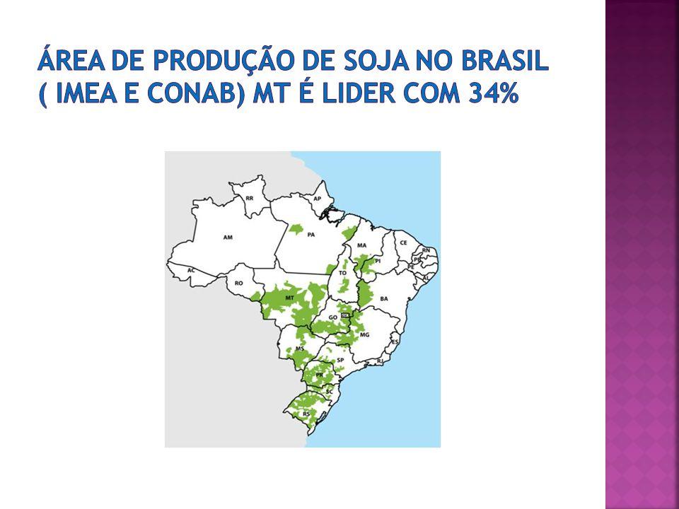 Área de produção de soja no Brasil ( Imea e Conab) Mt é lider com 34%