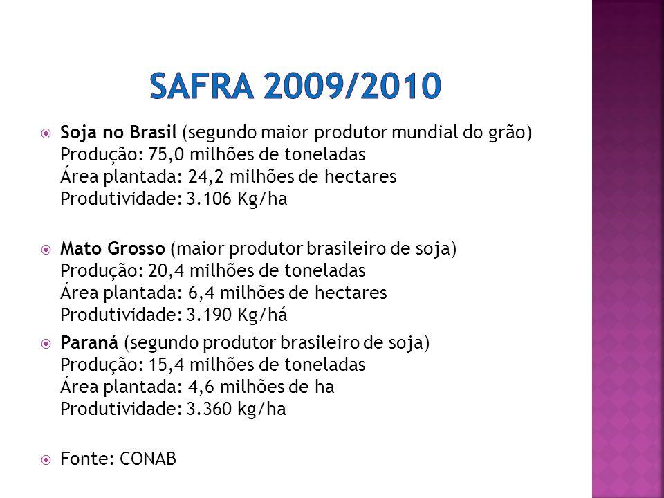 Safra 2009/2010