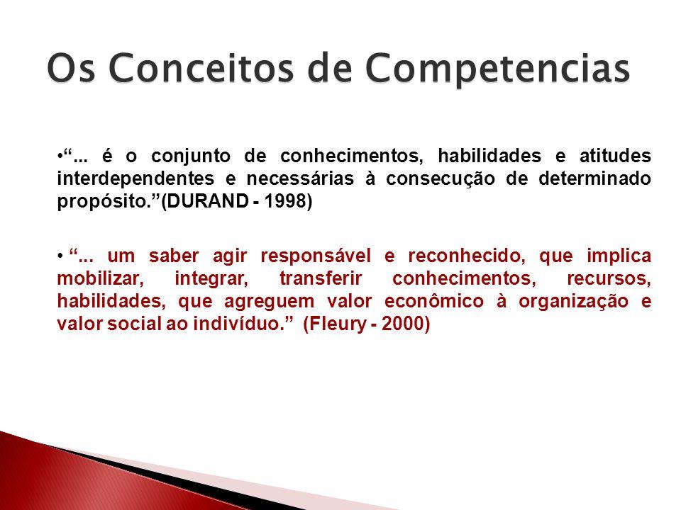 Os Conceitos de Competencias