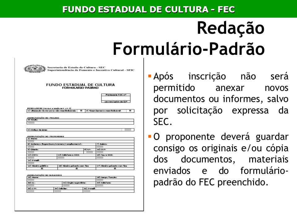 Redação Formulário-Padrão