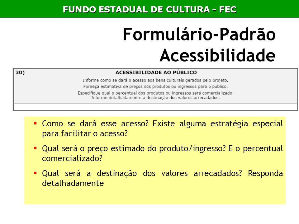 Formulário-Padrão Acessibilidade