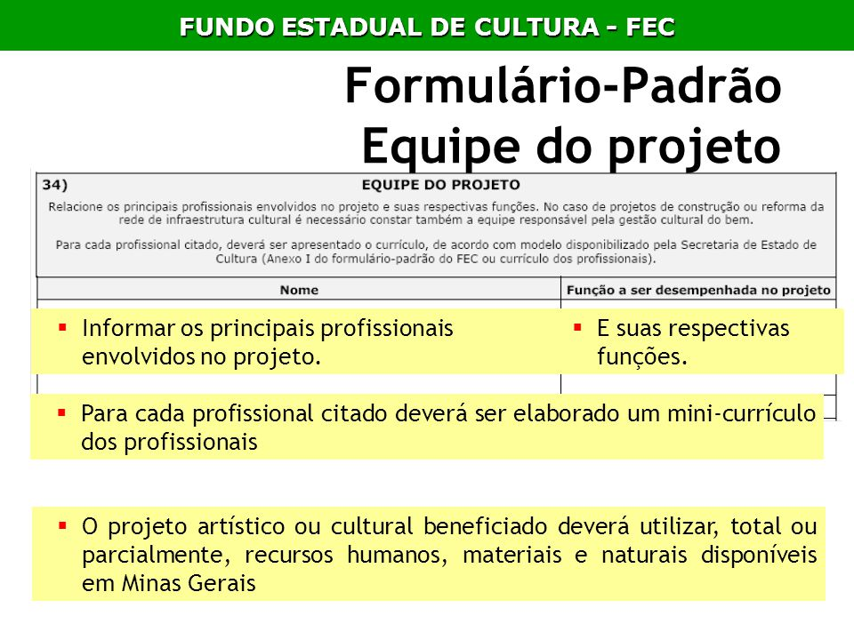 Formulário-Padrão Equipe do projeto
