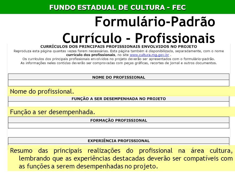 Formulário-Padrão Currículo - Profissionais