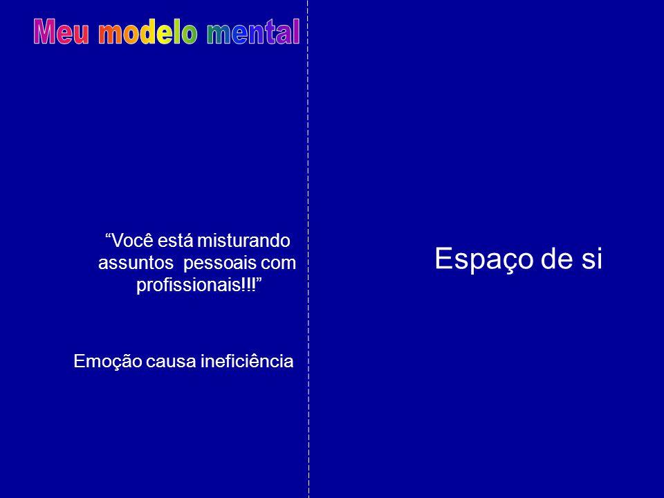 Meu modelo mental Espaço de si Você está misturando