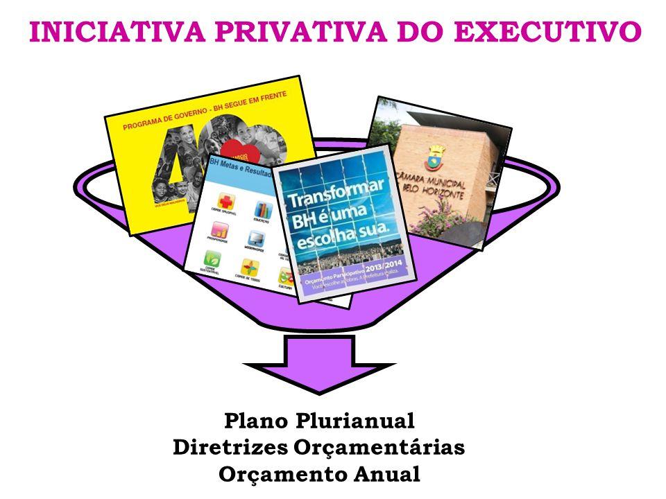 INICIATIVA PRIVATIVA DO EXECUTIVO