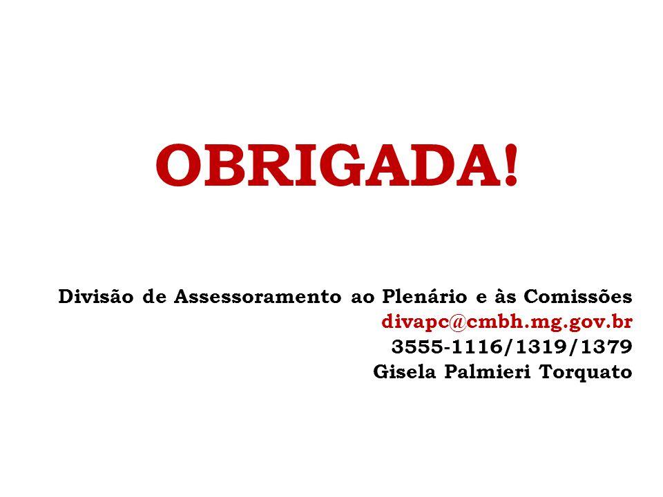 OBRIGADA! Divisão de Assessoramento ao Plenário e às Comissões