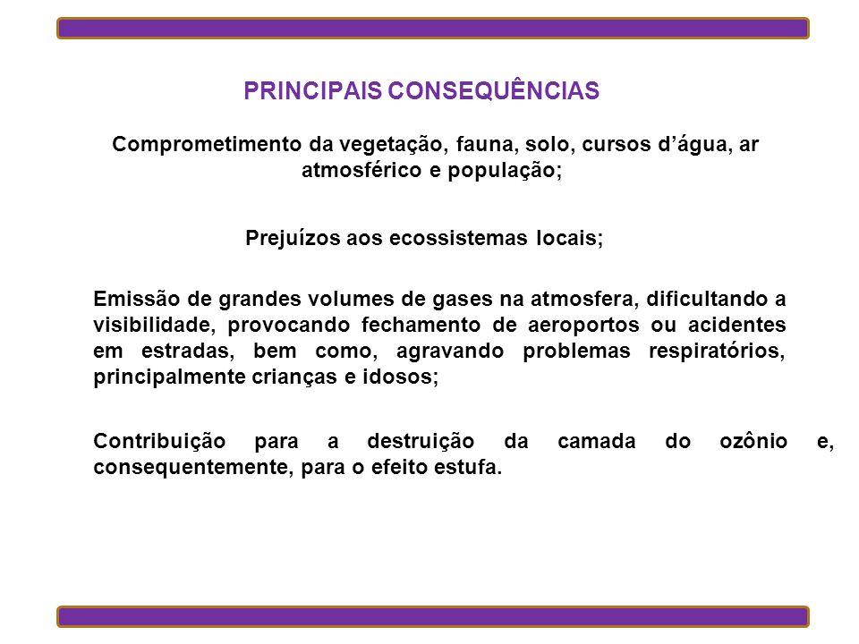 PRINCIPAIS CONSEQUÊNCIAS Prejuízos aos ecossistemas locais;
