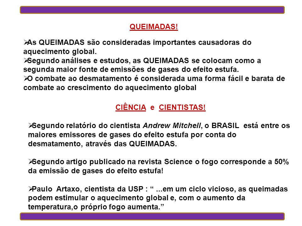As QUEIMADAS são consideradas importantes causadoras do aquecimento global.