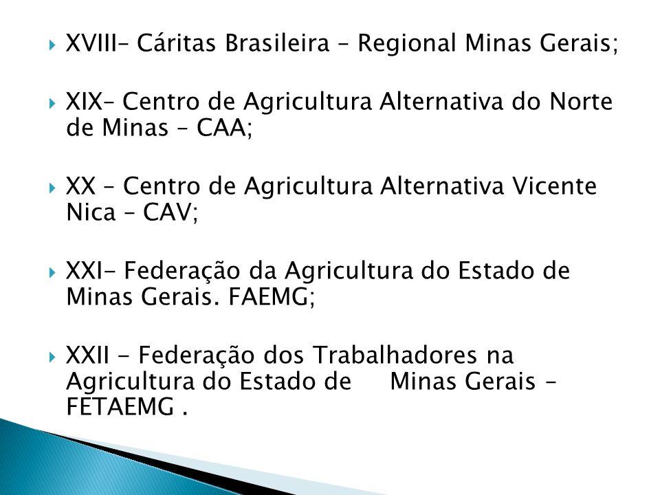 XVIII– Cáritas Brasileira – Regional Minas Gerais;