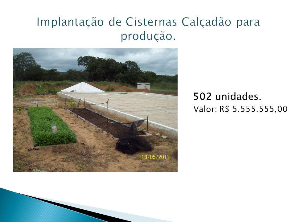Implantação de Cisternas Calçadão para produção.