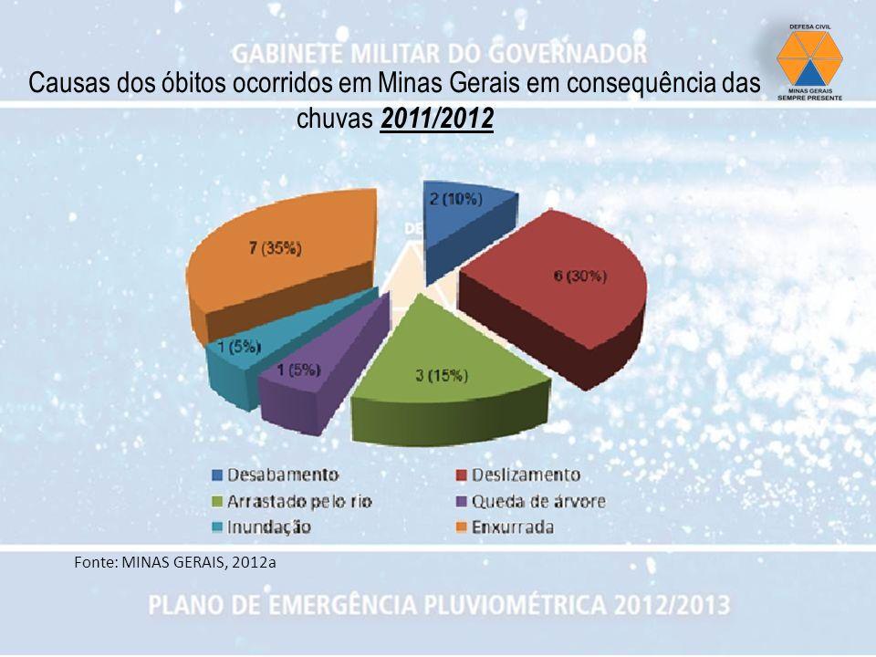 Causas dos óbitos ocorridos em Minas Gerais em consequência das chuvas 2011/2012