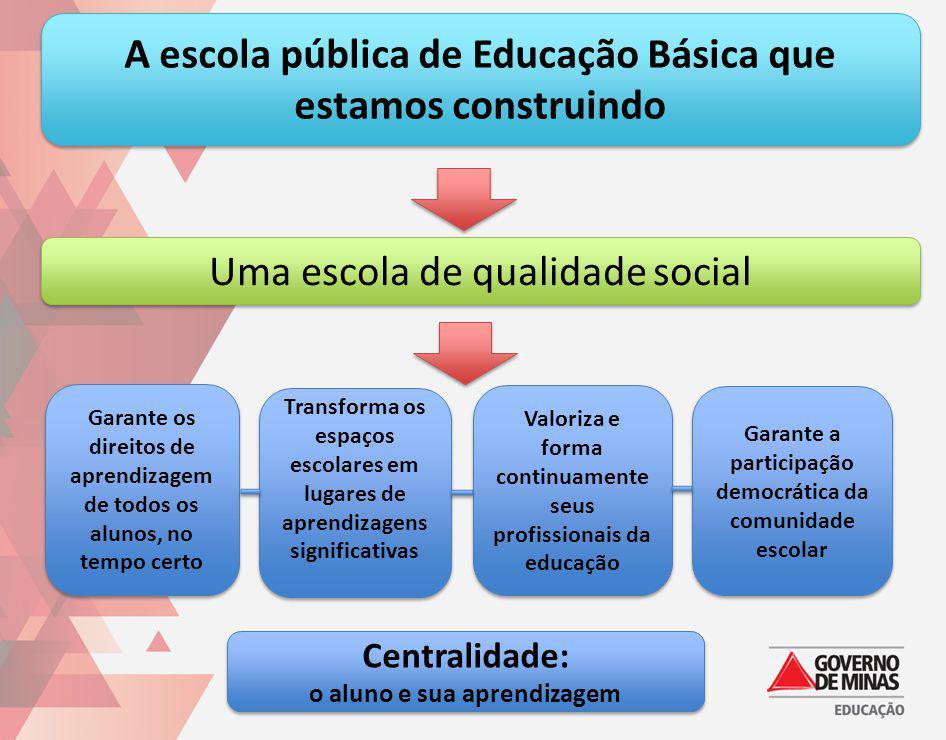A escola pública de Educação Básica que estamos construindo