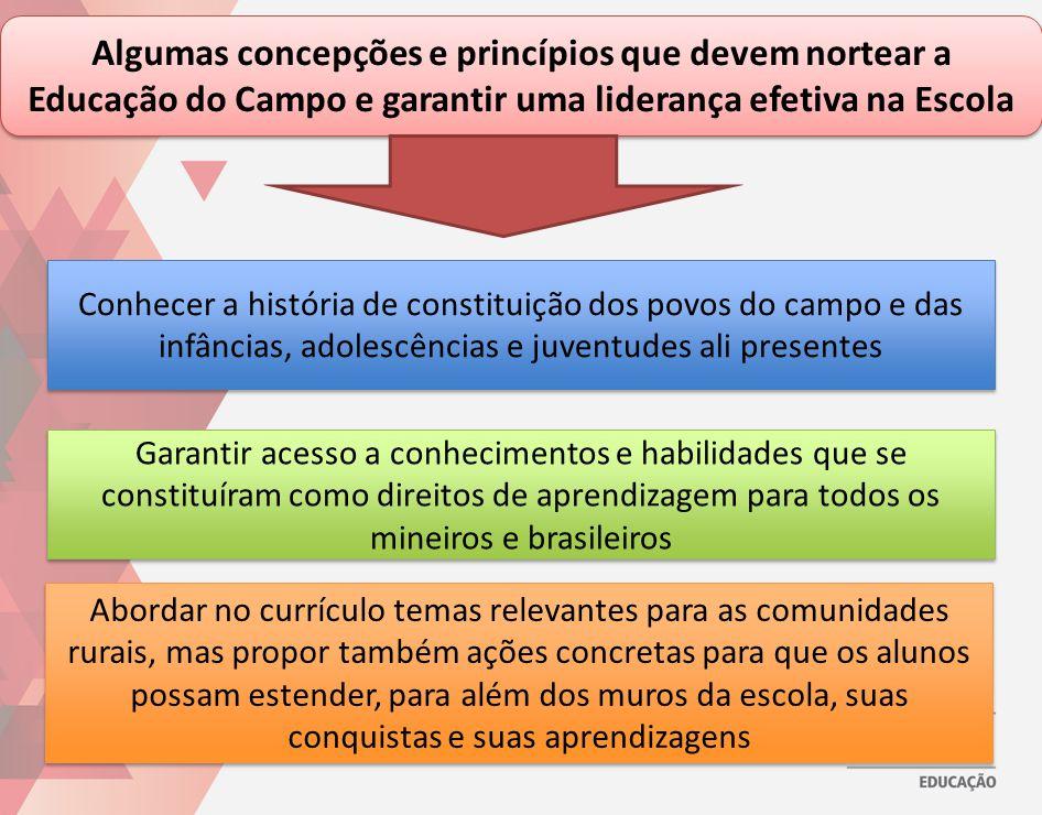 Algumas concepções e princípios que devem nortear a Educação do Campo e garantir uma liderança efetiva na Escola