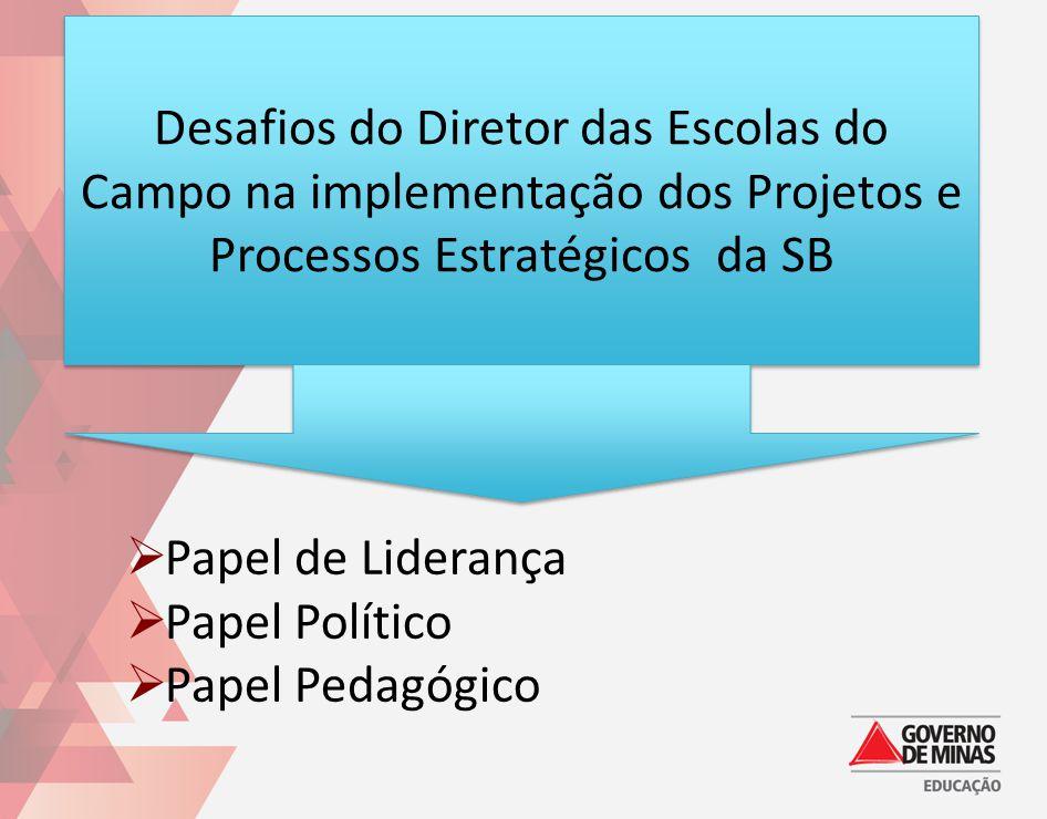 Desafios do Diretor das Escolas do Campo na implementação dos Projetos e Processos Estratégicos da SB