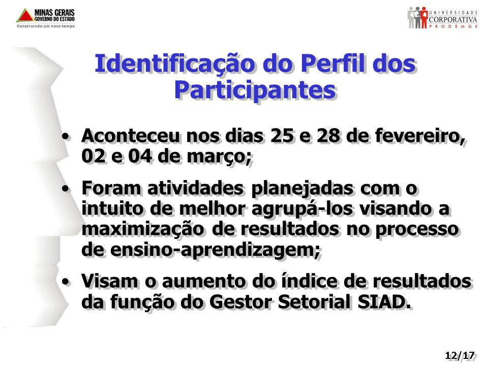 Identificação do Perfil dos Participantes