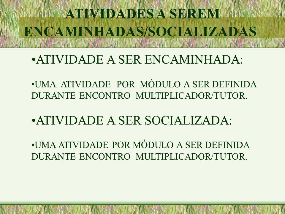 ATIVIDADES A SEREM ENCAMINHADAS/SOCIALIZADAS