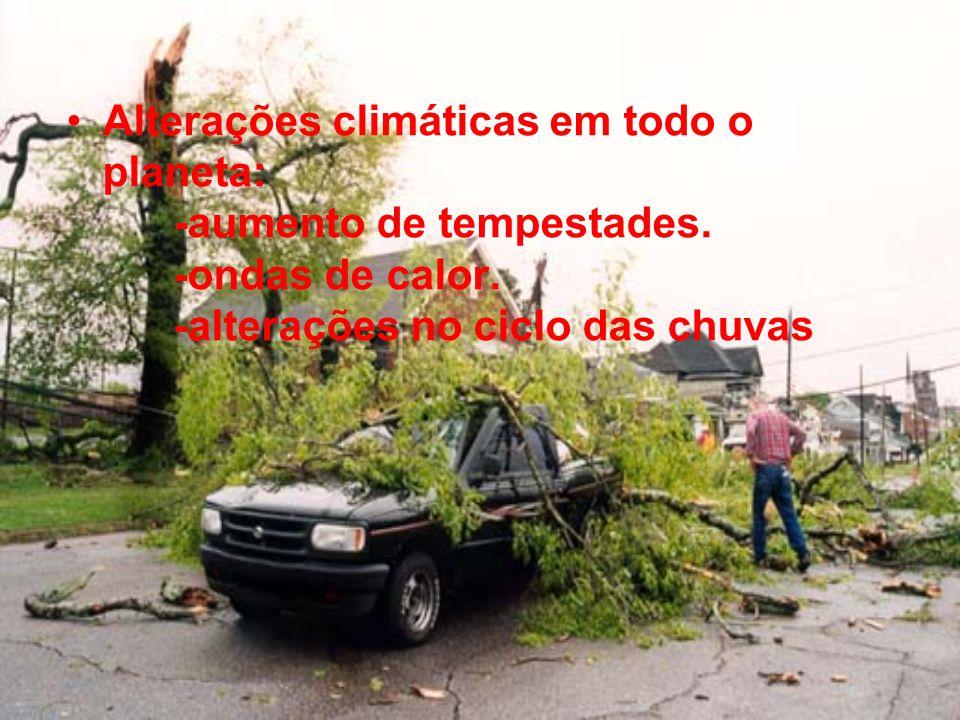 Alterações climáticas em todo o planeta: -aumento de tempestades