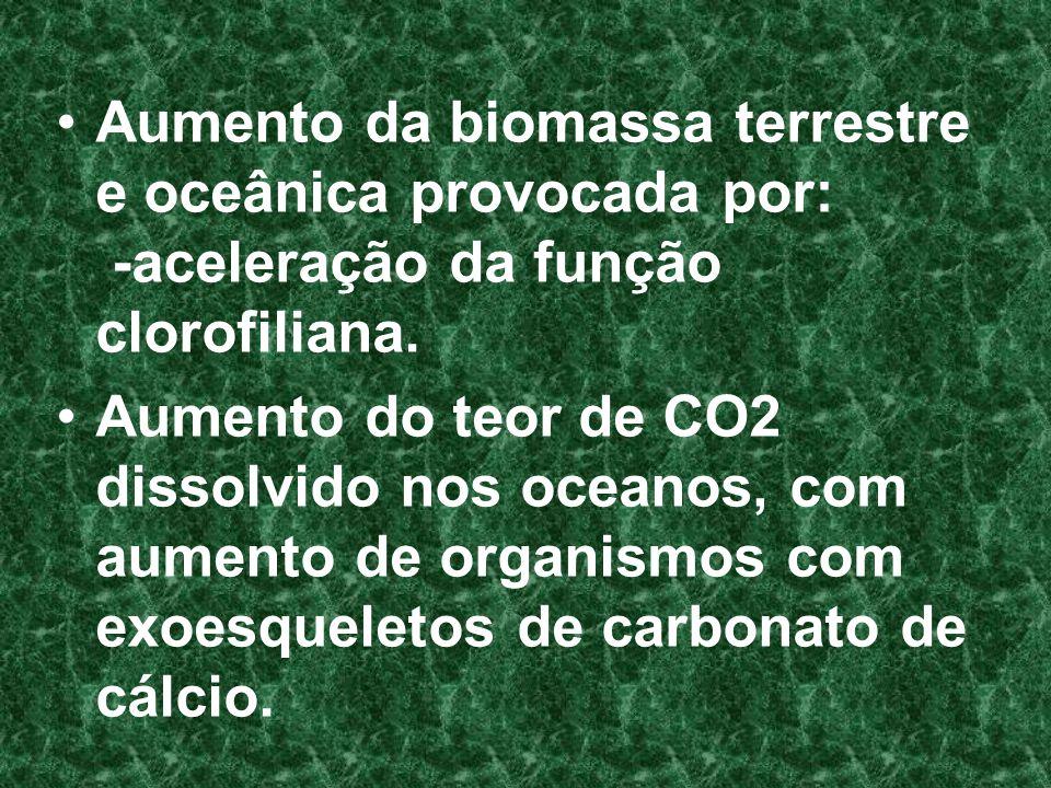 Aumento da biomassa terrestre e oceânica provocada por: -aceleração da função clorofiliana.