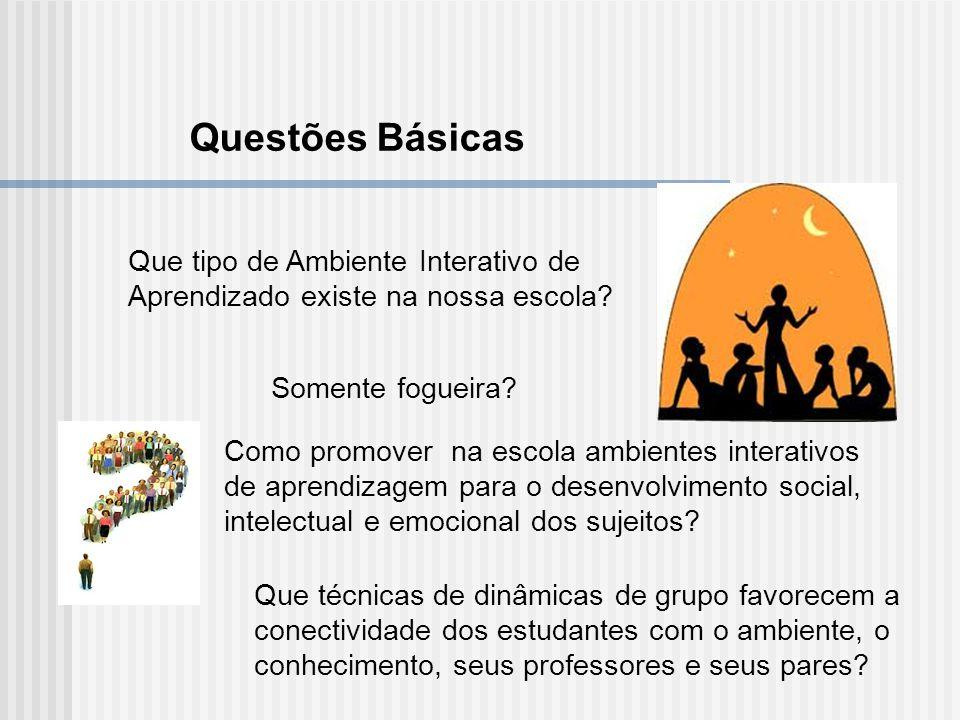 Questões Básicas Que tipo de Ambiente Interativo de Aprendizado existe na nossa escola Somente fogueira