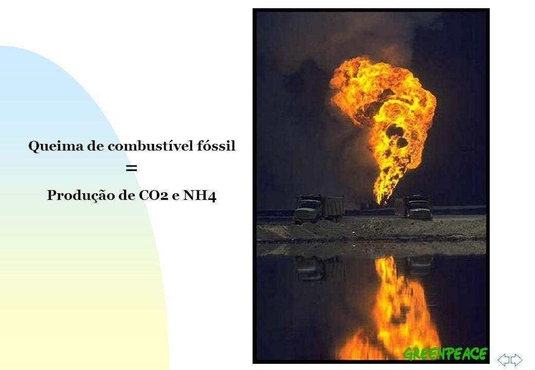 Queima de combustível fóssil =