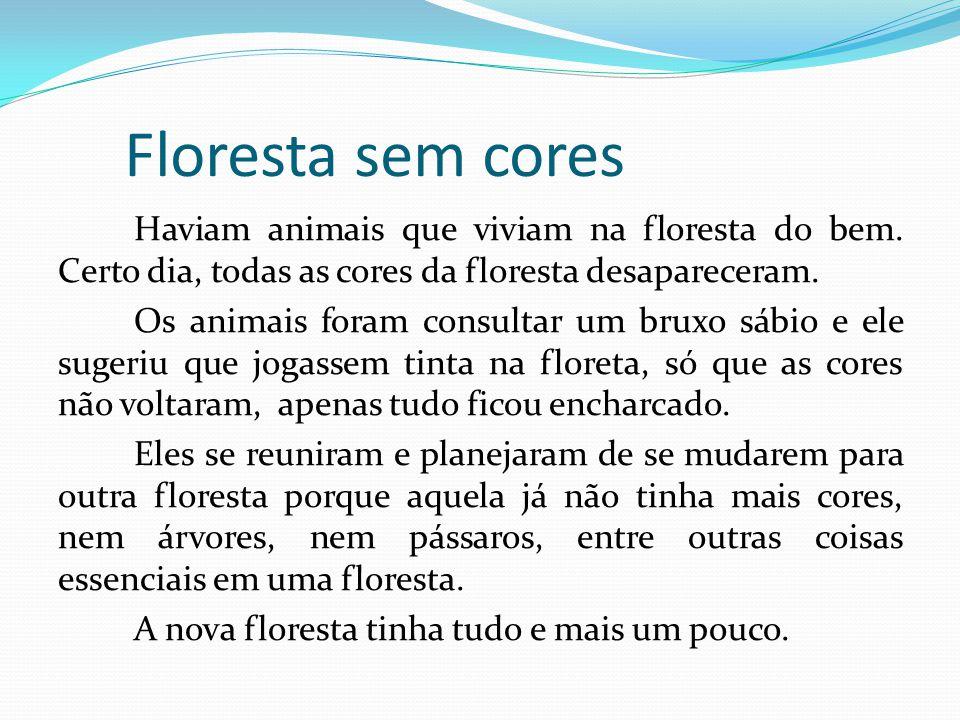 Floresta sem cores