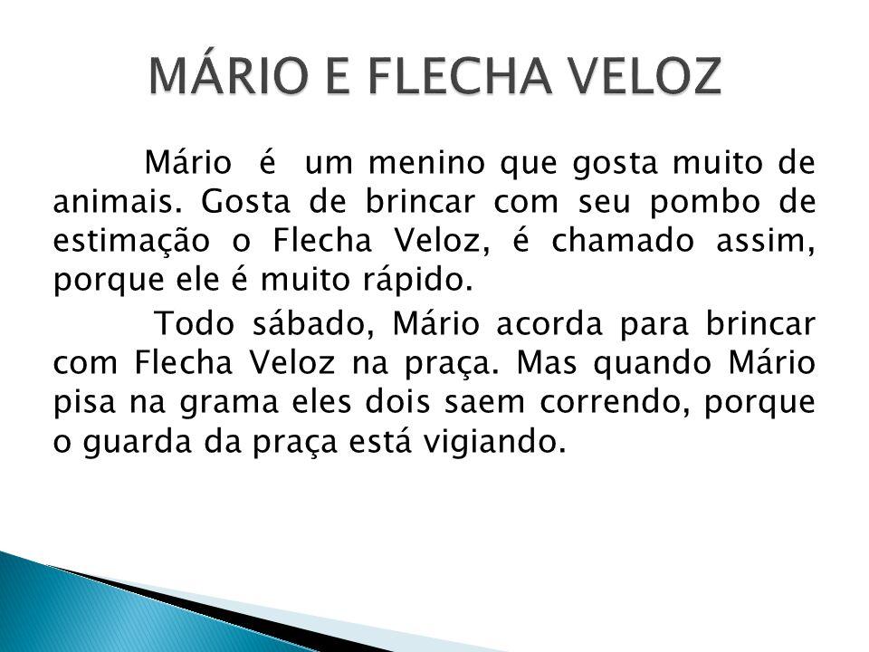 MÁRIO E FLECHA VELOZ