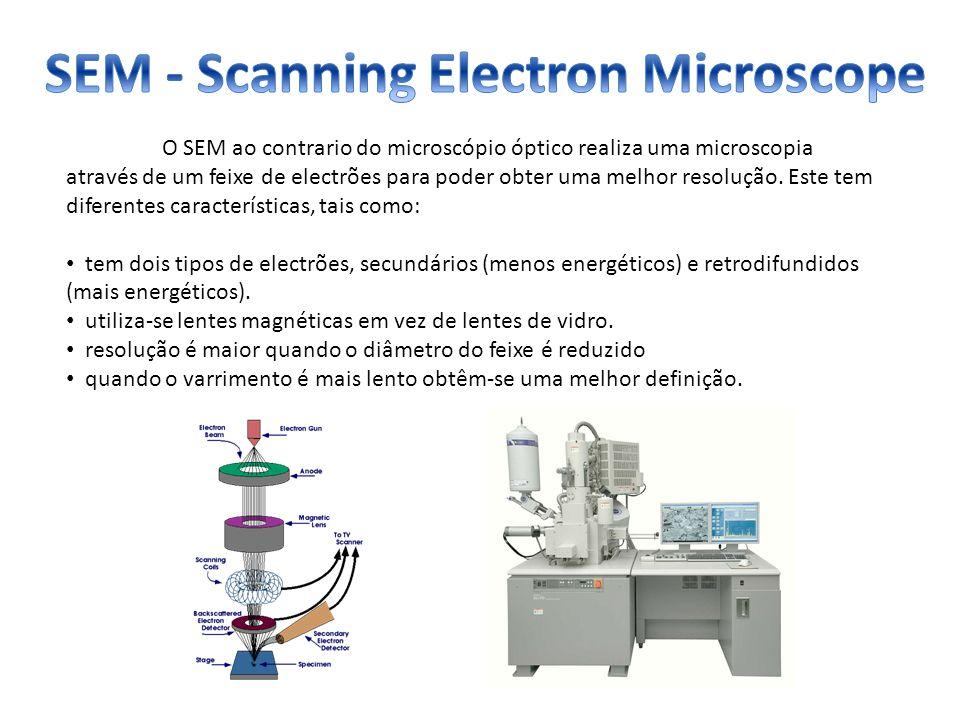 SEM - Scanning Electron Microscope