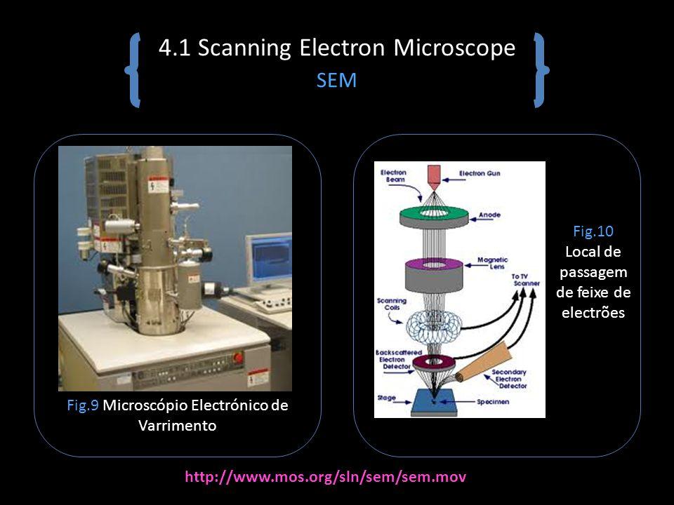 4.1 Scanning Electron Microscope SEM