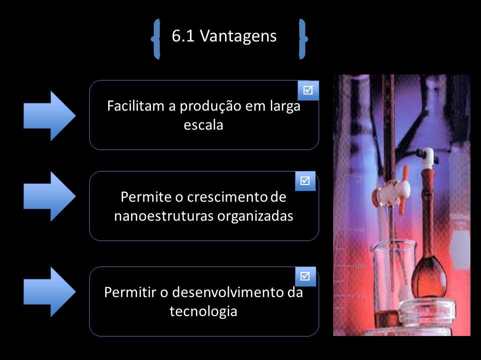 6.1 Vantagens Facilitam a produção em larga escala