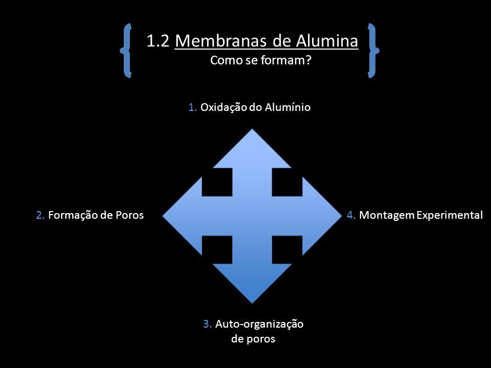 3. Auto-organização de poros
