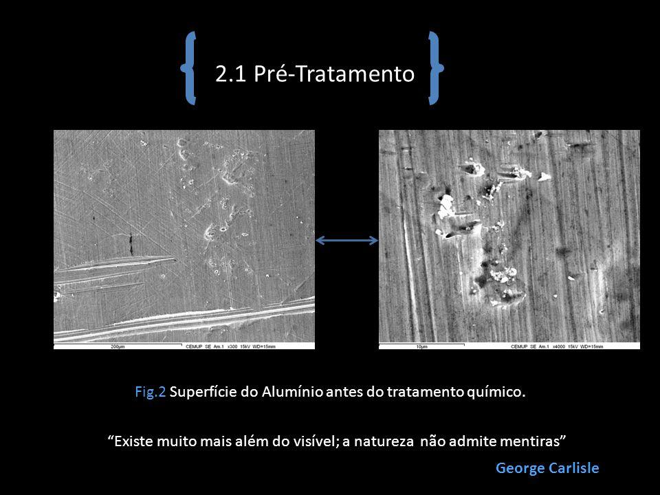 2.1 Pré-Tratamento Fig.2 Superfície do Alumínio antes do tratamento químico. Existe muito mais além do visível; a natureza não admite mentiras