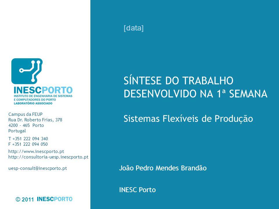 João Pedro Mendes Brandão INESC Porto