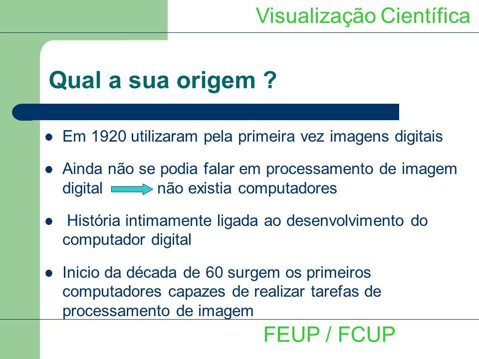 Qual a sua origem Visualização Científica FEUP / FCUP